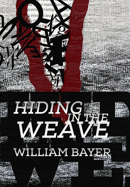 Hiding the Weave by William Bayer